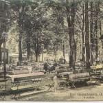 """Fragment parku przed """"Kurhotelem""""."""