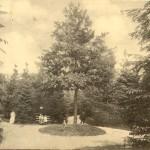 Park Zdrojowy - początek XX w.