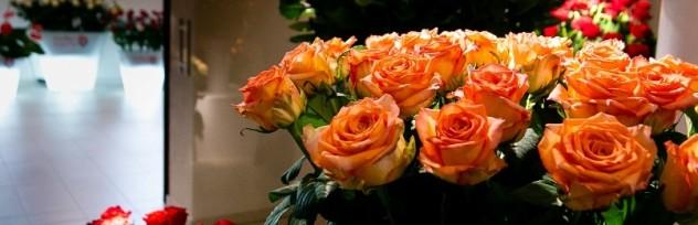 Wystawa kwiatów oraz warsztaty florystyczne na Festiwalu Róż